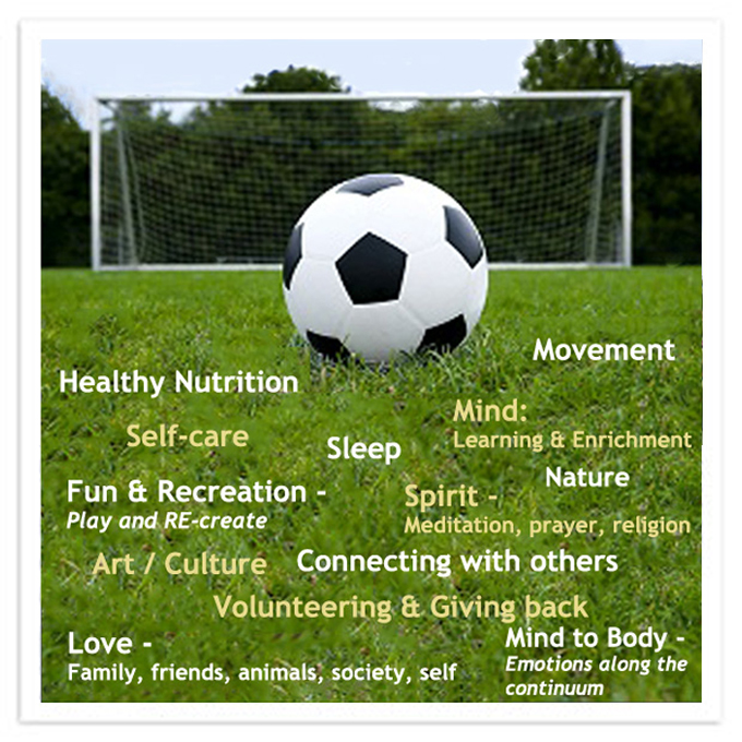 Image about life goals and the soccer goals | bazilian