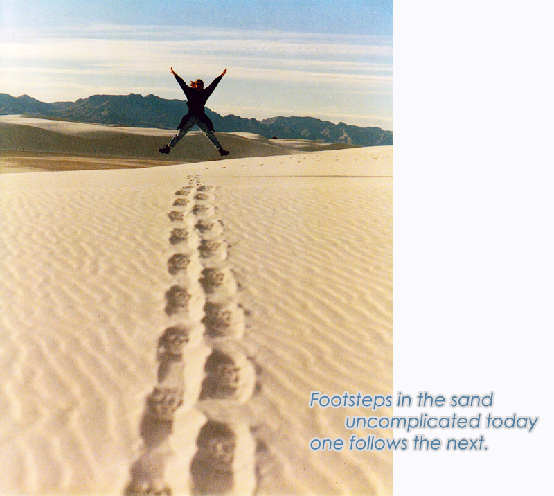 Image about Footsteps in the Sand Haiku | Bazilian