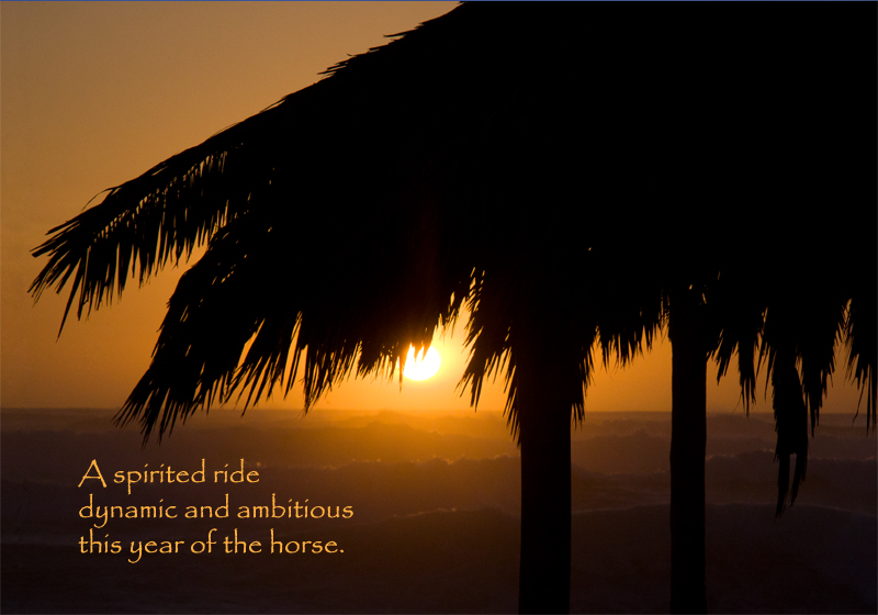 Image about Year of the Horse Haiku Windansea, Pearl Preis photographer | Bazilian